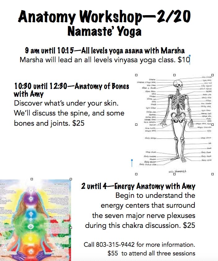 Anatomy Workshop With Marsha And Amy February 20 At Namaste Yoga